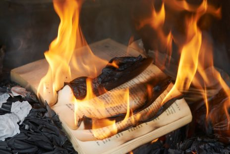 CRF9WH Books burning in fire