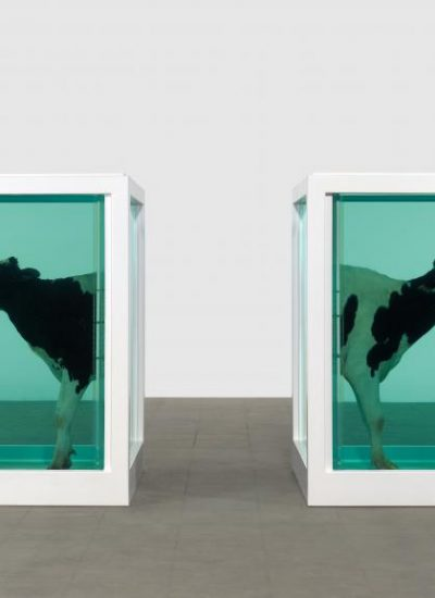 Edilberto_Love's is paradox_Damien Hirst